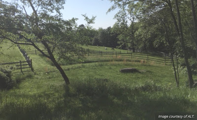 Allegheny Land Trust Protects 12-Acre Farm